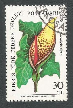 North Cyprus Stamps SG 113 1981 30TL - USED (L071)