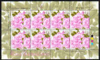 Cyprus Stamps SG 1243 2011 Aromatic Flowers Roses Full Sheet - MINT