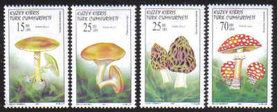 North Cyprus Stamps SG 438-41 1997 Fungi Mushrooms - MINT