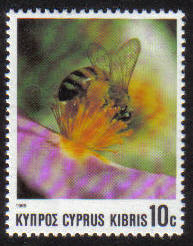 Cyprus Stamps SG 749 1989 10 cent Bees - MINT