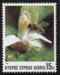 Cyprus Stamps SG 750 1989 15 cent Bees - MINT