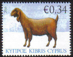 Cyprus Stamps SG 1214 2010 Goat 34c - MINT
