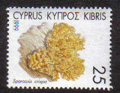 CYPRUS STAMPS SG 967 1999 25c - MINT