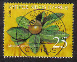 Cyprus Stamps SG 1113 2006 25c - USED (b418)