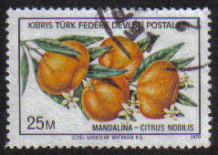 North Cyprus Stamps SG 030 1976 25m - USED (g096)