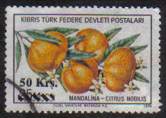 North Cyprus Stamps SG 074 1979 50k - USED (g107)