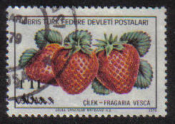 North Cyprus Stamps SG 075 1979 1tl - USED (g109)