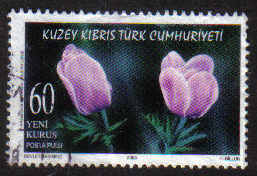 North Cyprus Stamps SG 0627 2006 60ykr - USED (g144)
