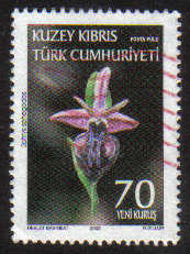North Cyprus Stamps SG 0667 2008 70ykr - USED (g146)