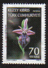 North Cyprus Stamps SG 0667 2008 70ykr - USED (g147)