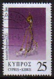 Cyprus Stamps SG 0987 2000 25c - USED (g365)