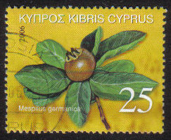 Cyprus Stamps SG 1113 2006 25c - USED (g642)
