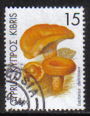 Cyprus Stamps SG 966 1999 15c - USED (h117)