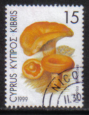 Cyprus Stamps SG 966 1999 15c - USED (h118)