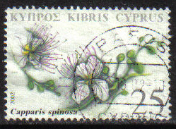 Cyprus Stamps SG 1033 2002 25c - USED (h222)