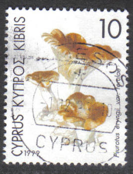 Cyprus Stamps SG 965 1999 10c - USED (h351)