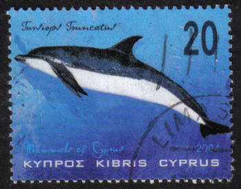 Cyprus Stamps SG 1080 2004 20 cent - USED (h364)