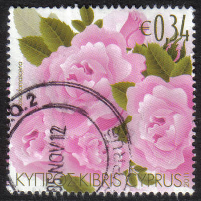 Cyprus Stamps SG 1243 2011 Aromatic Flowers Roses - USED (h418)