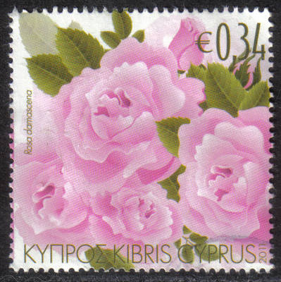 Cyprus Stamps SG 1243 2011 Aromatic Flowers Roses - USED (h417)