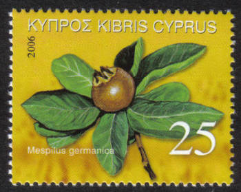 Cyprus Stamps SG 1113 2006 Europa 25c - MINT