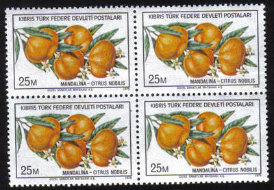 North Cyprus Stamps SG 030 1976 25m - Block of 4 MINT