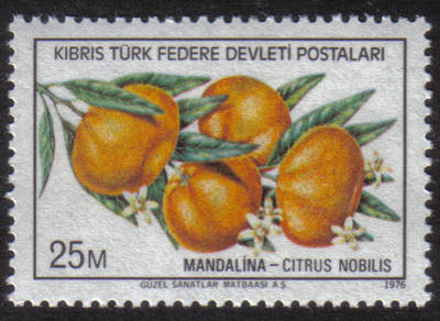 North Cyprus Stamps SG 030 1976 25m - MINT