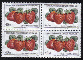 North Cyprus Stamps SG 031 1976 40m - Block of 4 MINT