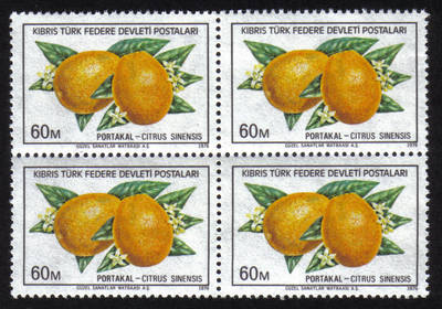 North Cyprus Stamps SG 032 1976 60m - Block of 4 MINT