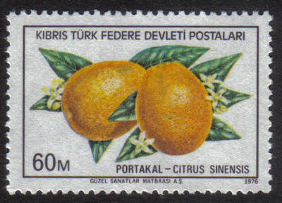 North Cyprus Stamps SG 032 1976 60m - MINT