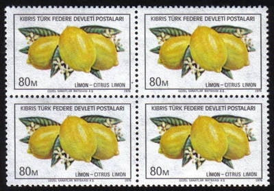 North Cyprus Stamps SG 033 1976 80m - Block of 4 MINT