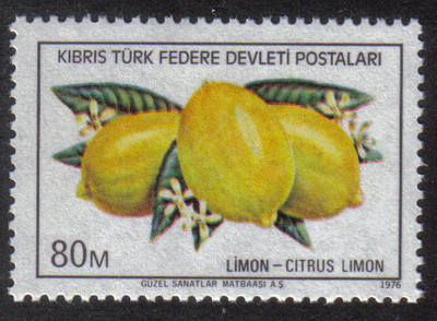 North Cyprus Stamps SG 033 1976 80m - MINT