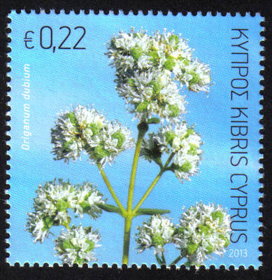 Cyprus Stamps SG 2013 (f) Aromatic stamp Oregano 22 cents - MINT