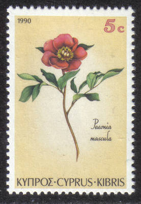 Cyprus Stamps SG 787 1990 5 cent Paeonia mascula - MINT