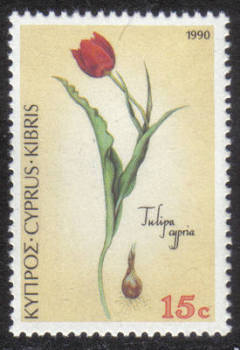 Cyprus Stamps SG 789 1990 15 cent Tulipa cypria - MINT