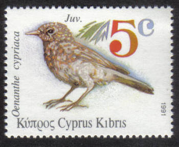 Cyprus Stamps SG 800 1991 5c Pied Wheatear Birds - MINT