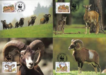 Cyprus Stamps Maxim Postcard 1998 SG 941-44 World Wildlife Fund Mouflon