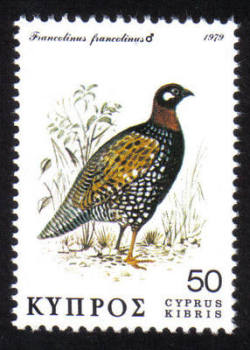 Cyprus Stamps SG 524 1979 50c - MINT