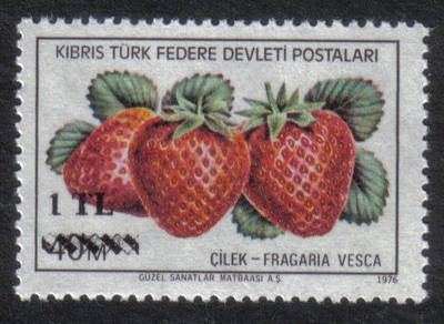North Cyprus Stamps SG 075 1979 1 TL Surcharge - MINT