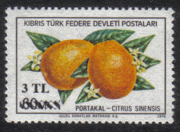 North Cyprus Stamps SG 076 1979 3 TL Surcharge - MINT