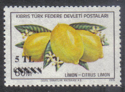 North Cyprus Stamps SG 077 1979 5 TL Surcharge - MINT