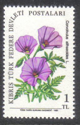North Cyprus Stamps SG 109 1981 1 TL - MINT