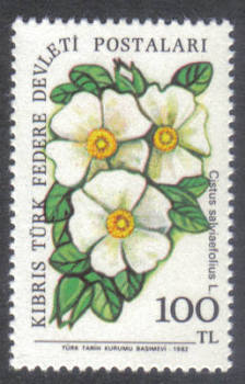 North Cyprus Stamps SG 115 1981 100 TL - MINT