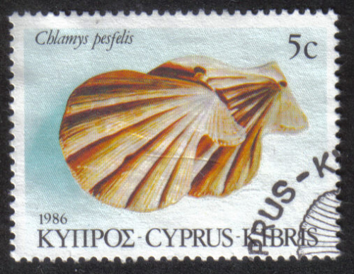 Cyprus Stamps SG 680 1986 5c - USED (h897)