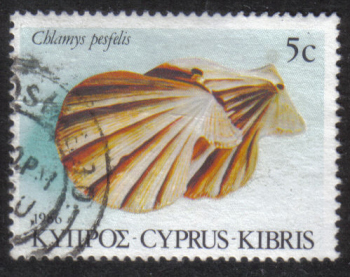 Cyprus Stamps SG 680 1986 5c - USED (h898)