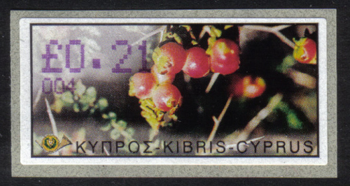 Cyprus Stamps 105 Vending Machine Labels Type E 2002 Ayia Napa (004)