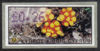 "Cyprus Stamps 168 Vending Machine Labels Type E 2002 Paphos (006) ""Citinus Hypocistis"" 26 cent - MINT"
