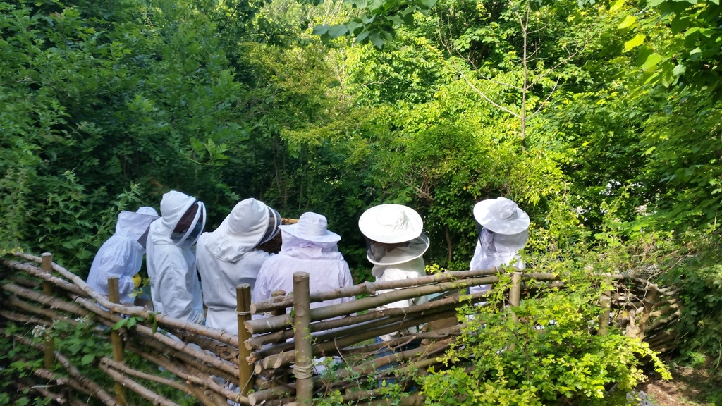 bee keeping mfg open day 2015