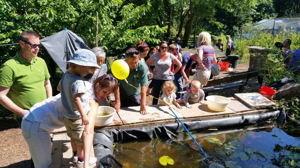 pond dipping with huw morgan sussex wildlife trust mfg open day 2015