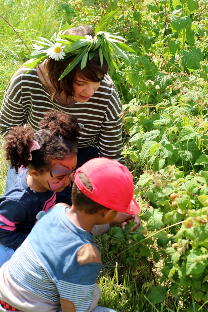 raspberry picking at moulsecoomb school