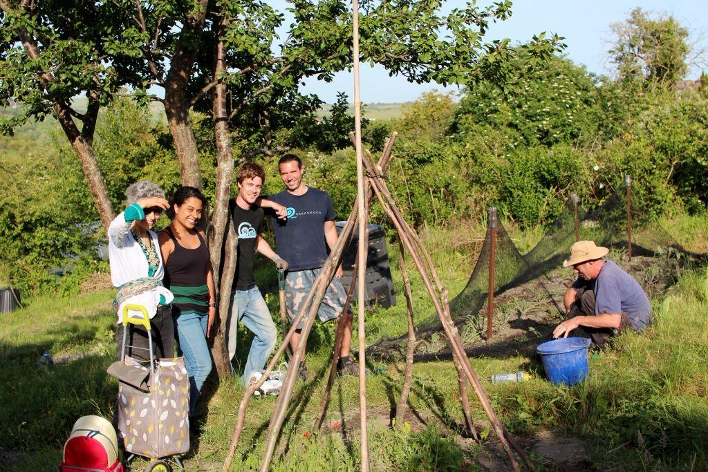New Roots community allotment